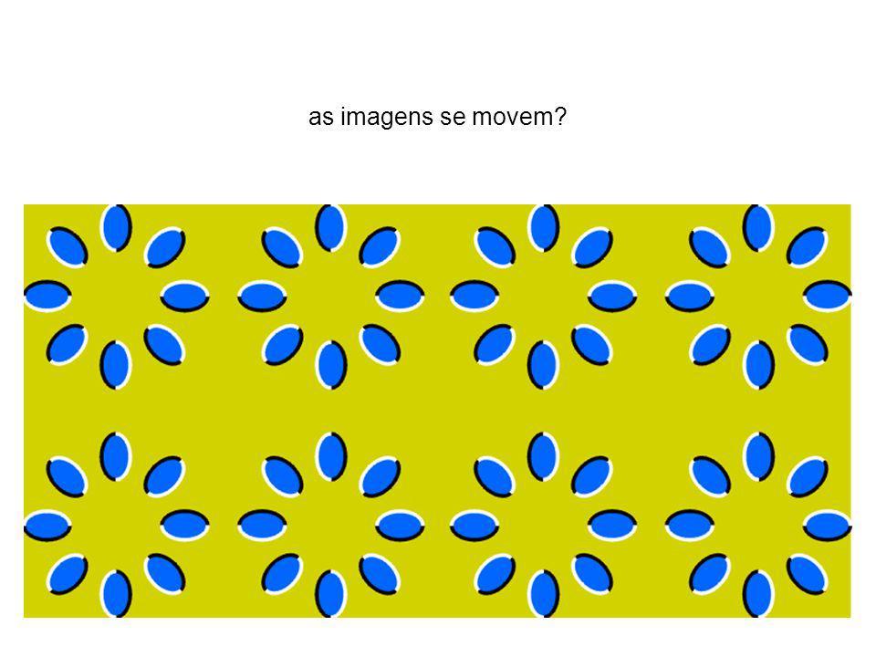 as imagens se movem?