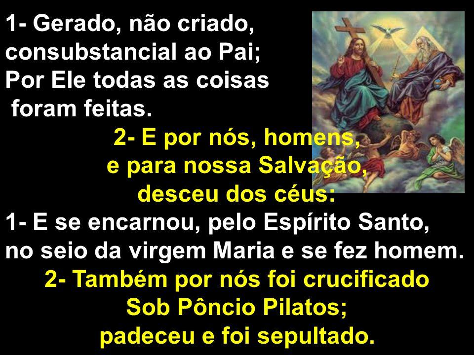 1- Gerado, não criado, consubstancial ao Pai; Por Ele todas as coisas foram feitas. 2- E por nós, homens, e para nossa Salvação, desceu dos céus: 1- E