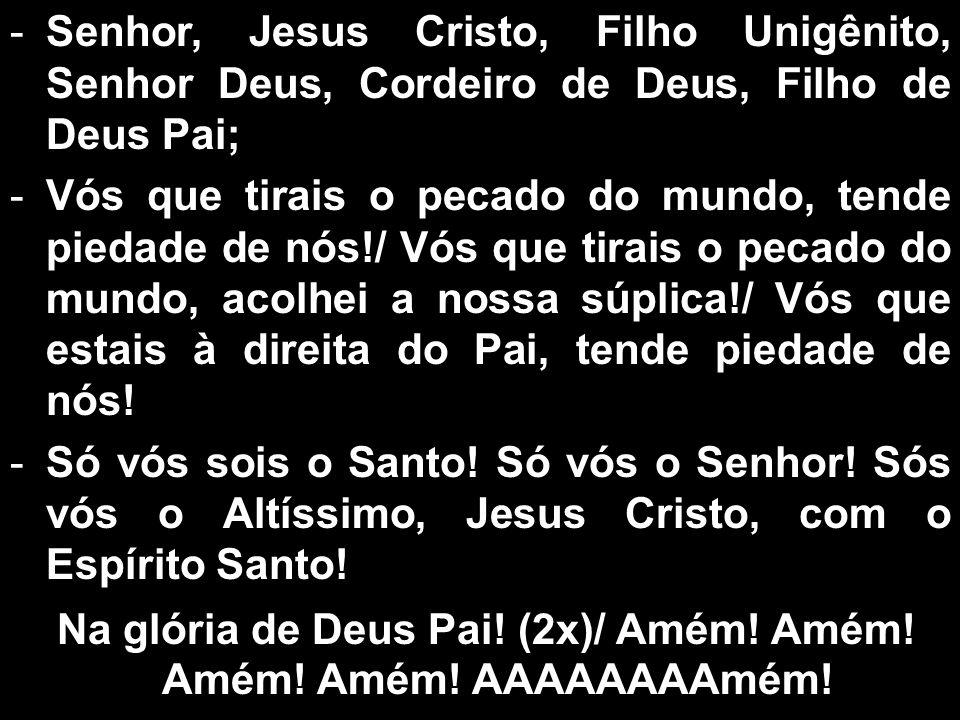 -Senhor, Jesus Cristo, Filho Unigênito, Senhor Deus, Cordeiro de Deus, Filho de Deus Pai; -Vós que tirais o pecado do mundo, tende piedade de nós!/ Vó