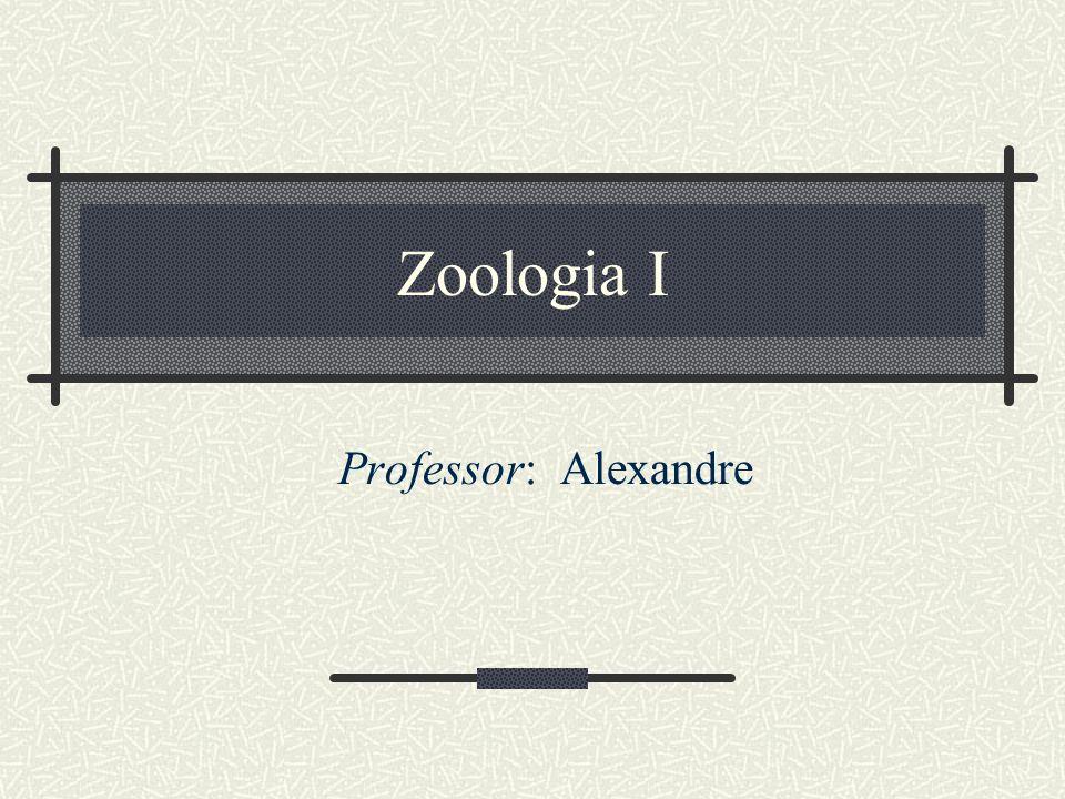 Zoologia I Professor: Alexandre