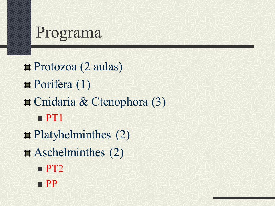 Programa Protozoa (2 aulas) Porifera (1) Cnidaria & Ctenophora (3) PT1 Platyhelminthes (2) Aschelminthes (2) PT2 PP