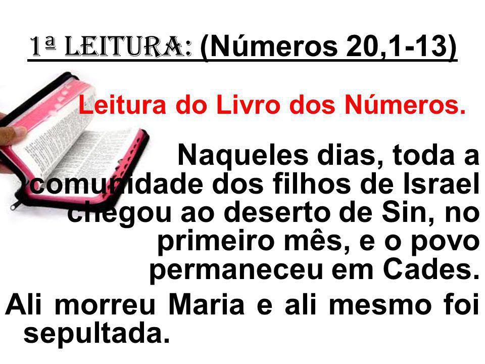 1ª Leitura: (Números 20,1-13) Leitura do Livro dos Números. Naqueles dias, toda a comunidade dos filhos de Israel chegou ao deserto de Sin, no primeir