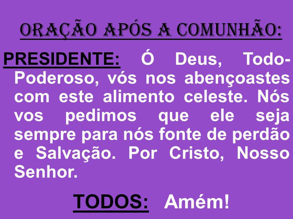 ORAÇÃO APÓS A COMUNHÃO: PRESIDENTE: Ó Deus, Todo- Poderoso, vós nos abençoastes com este alimento celeste.