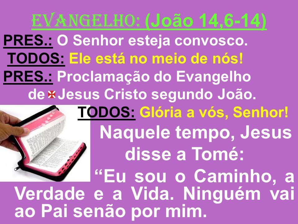 EVANGELHO: (João 14,6-14) PRES.: O Senhor esteja convosco. TODOS: Ele está no meio de nós! PRES.: Proclamação do Evangelho de Jesus Cristo segundo Joã