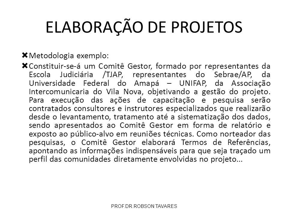 Metodologia exemplo: Constituir-se-á um Comitê Gestor, formado por representantes da Escola Judiciária /TJAP, representantes do Sebrae/AP, da Universi