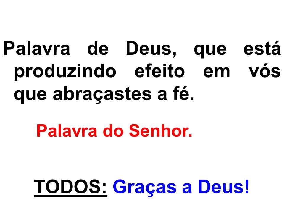 Palavra de Deus, que está produzindo efeito em vós que abraçastes a fé. Palavra do Senhor. TODOS: Graças a Deus!