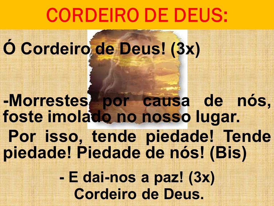 CORDEIRO DE DEUS: Ó Cordeiro de Deus! (3x) -Morrestes por causa de nós, foste imolado no nosso lugar. Por isso, tende piedade! Tende piedade! Piedade