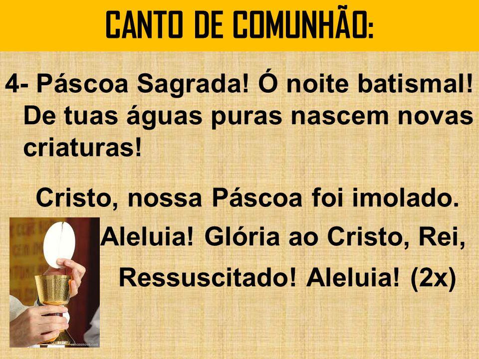 CANTO DE COMUNHÃO: 4- Páscoa Sagrada.Ó noite batismal.