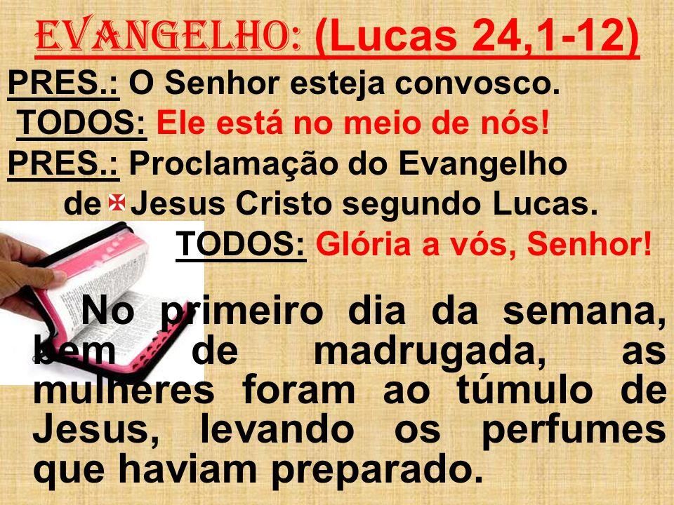 EVANGELHO: (Lucas 24,1-12) PRES.: O Senhor esteja convosco.