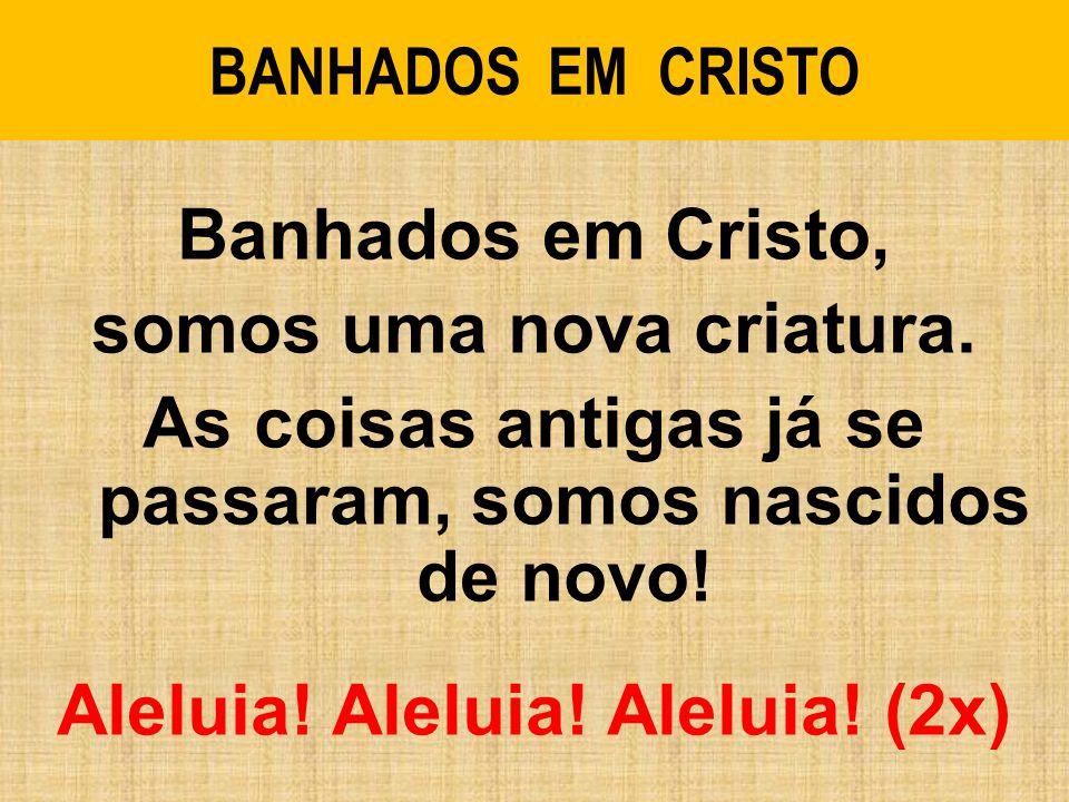 BANHADOS EM CRISTO Banhados em Cristo, somos uma nova criatura.