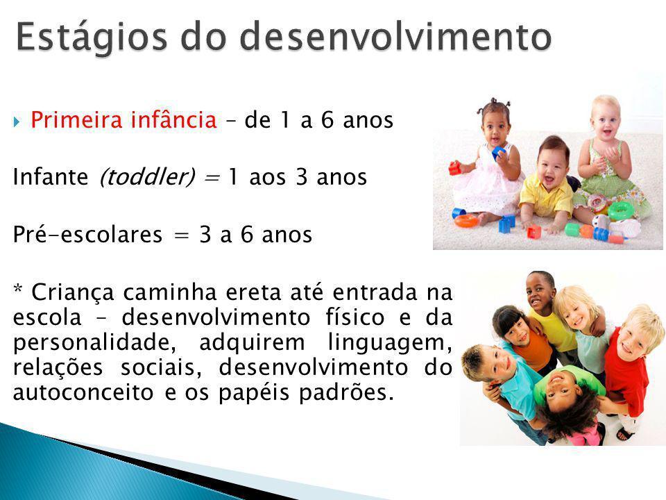 Primeira infância – de 1 a 6 anos Infante (toddler) = 1 aos 3 anos Pré-escolares = 3 a 6 anos * Criança caminha ereta até entrada na escola – desenvol