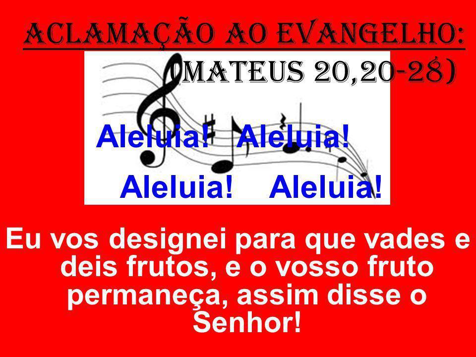 ACLAMAÇÃO AO EVANGELHO: (Mateus 20,20-28) Aleluia.