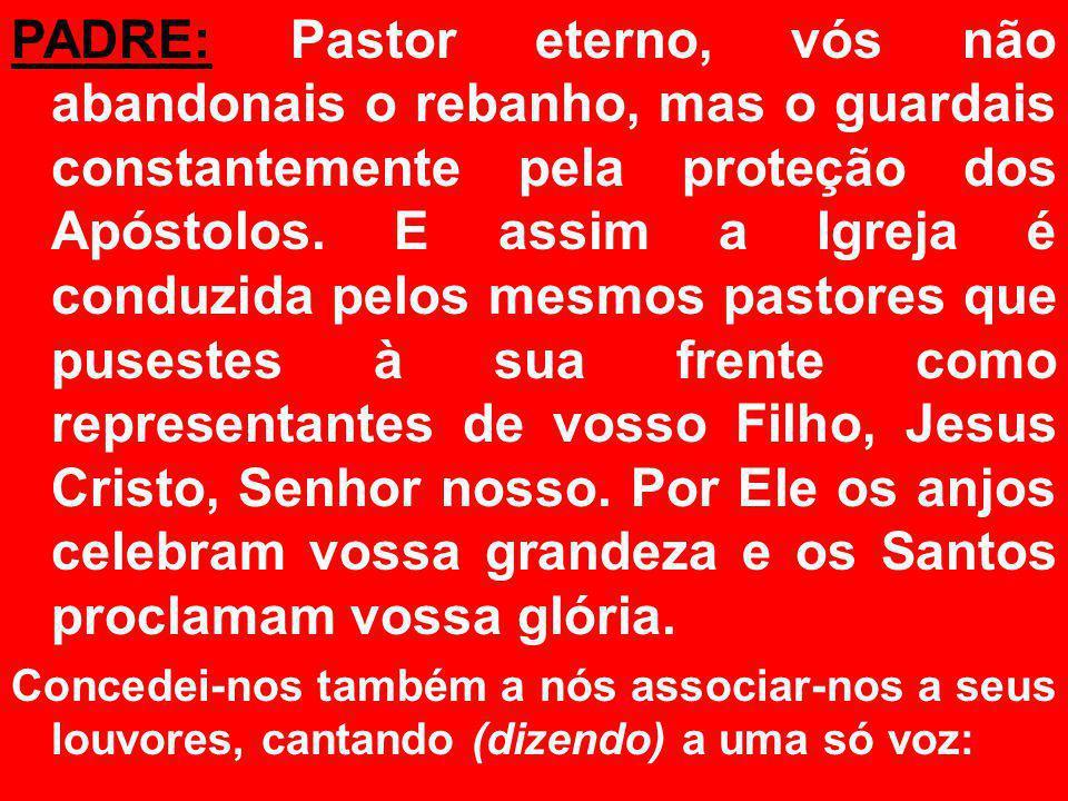PADRE: Pastor eterno, vós não abandonais o rebanho, mas o guardais constantemente pela proteção dos Apóstolos.