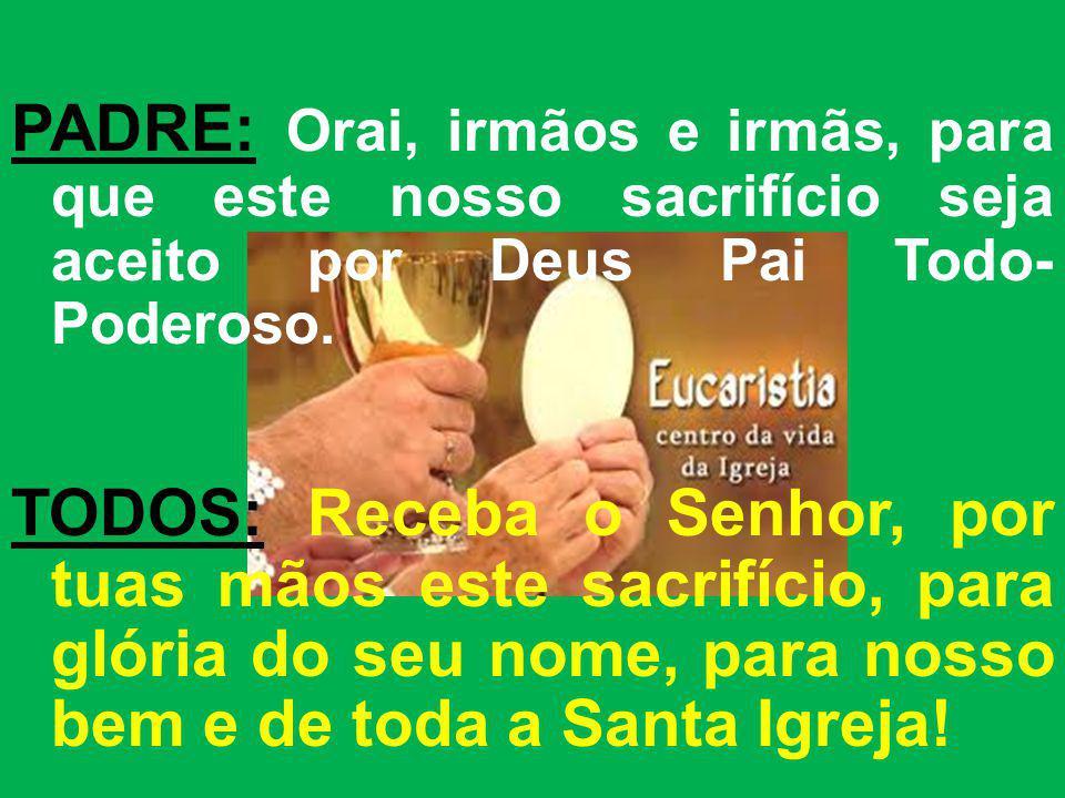 PADRE: Orai, irmãos e irmãs, para que este nosso sacrifício seja aceito por Deus Pai Todo- Poderoso. TODOS: Receba o Senhor, por tuas mãos este sacrif