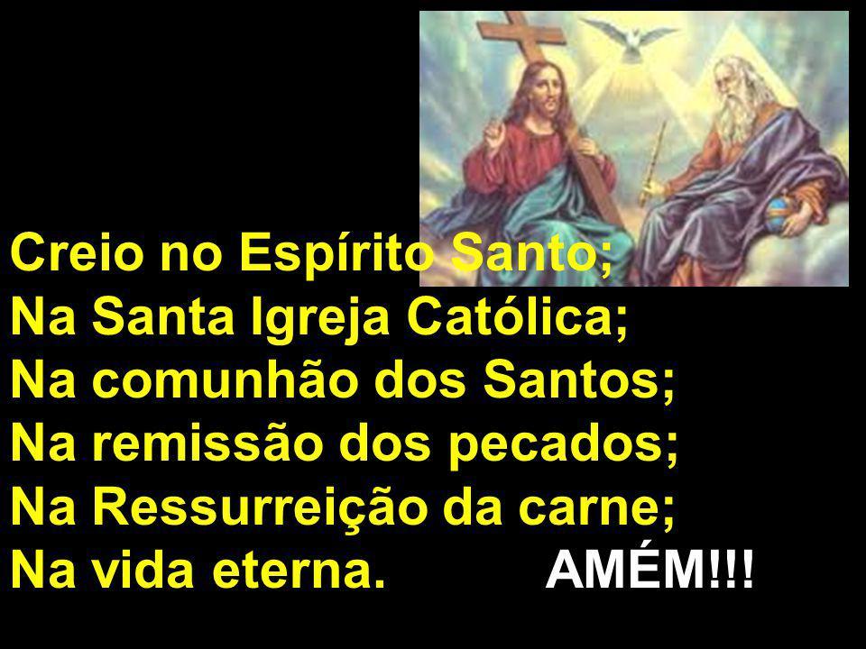 Creio no Espírito Santo; Na Santa Igreja Católica; Na comunhão dos Santos; Na remissão dos pecados; Na Ressurreição da carne; Na vida eterna. AMÉM!!!
