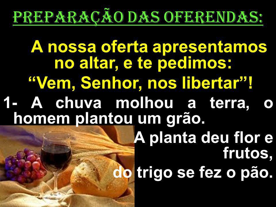 PREPARAÇÃO DAS OFERENDAS: A nossa oferta apresentamos no altar, e te pedimos: Vem, Senhor, nos libertar! 1- A chuva molhou a terra, o homem plantou um