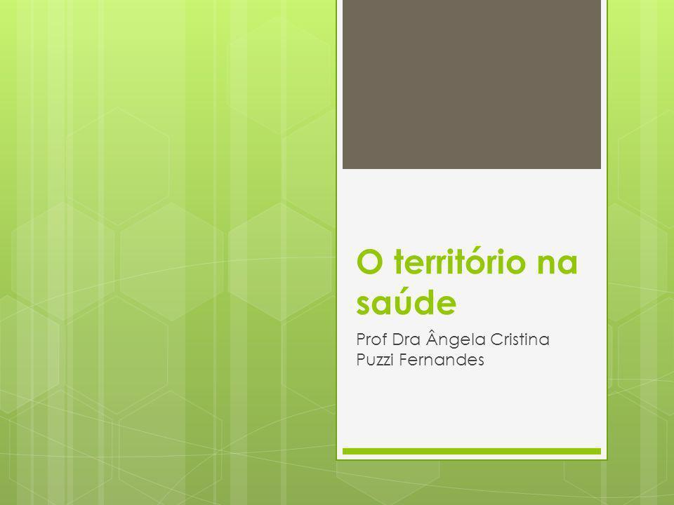O território na saúde Prof Dra Ângela Cristina Puzzi Fernandes