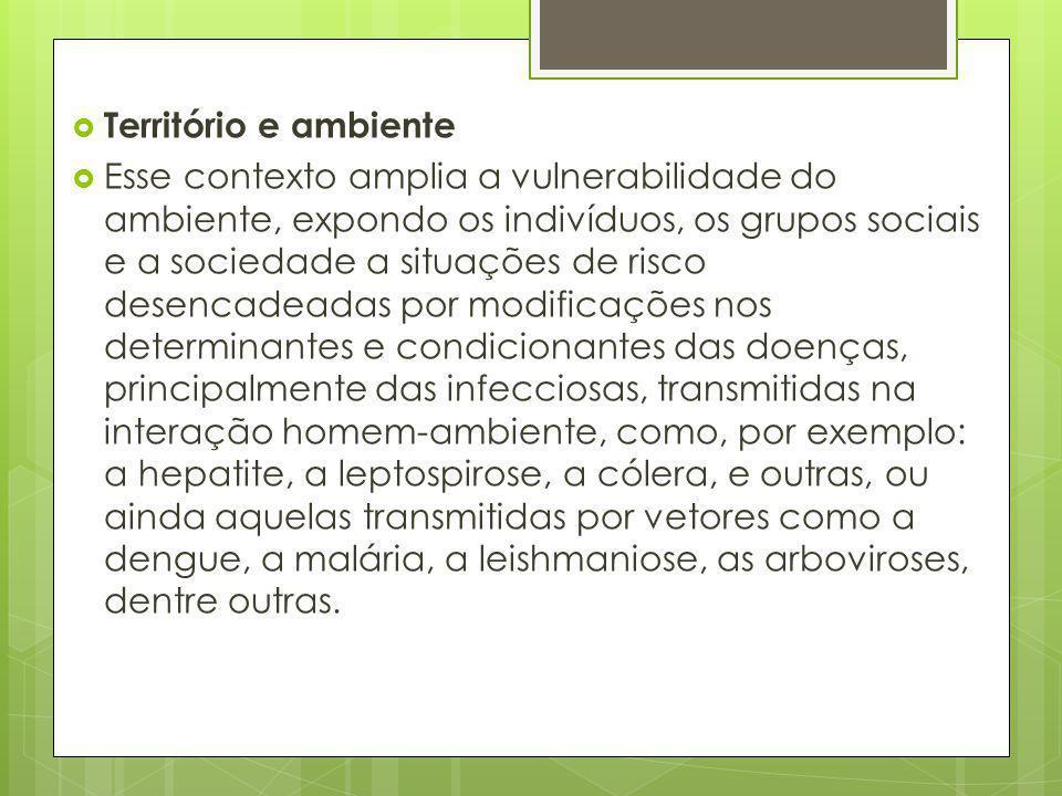 Território e ambiente Esse contexto amplia a vulnerabilidade do ambiente, expondo os indivíduos, os grupos sociais e a sociedade a situações de risco