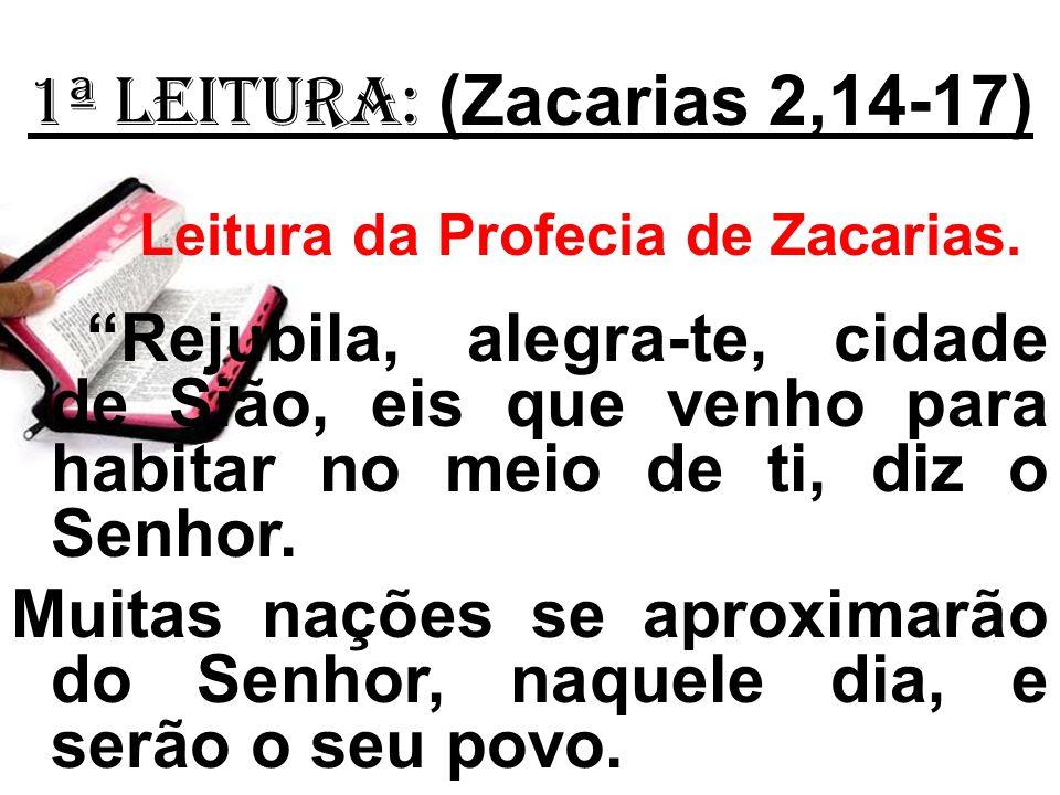1ª Leitura: (Zacarias 2,14-17) Leitura da Profecia de Zacarias. Rejubila, alegra-te, cidade de Sião, eis que venho para habitar no meio de ti, diz o S