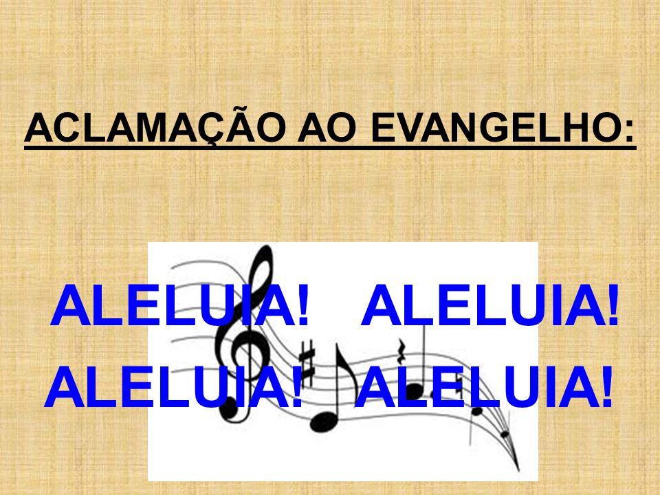 ACLAMAÇÃO AO EVANGELHO: ALELUIA! ALELUIA! ALELUIA!