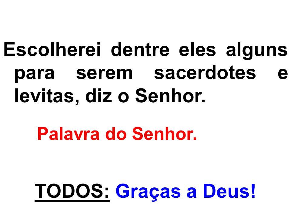 Escolherei dentre eles alguns para serem sacerdotes e levitas, diz o Senhor. Palavra do Senhor. TODOS: Graças a Deus!