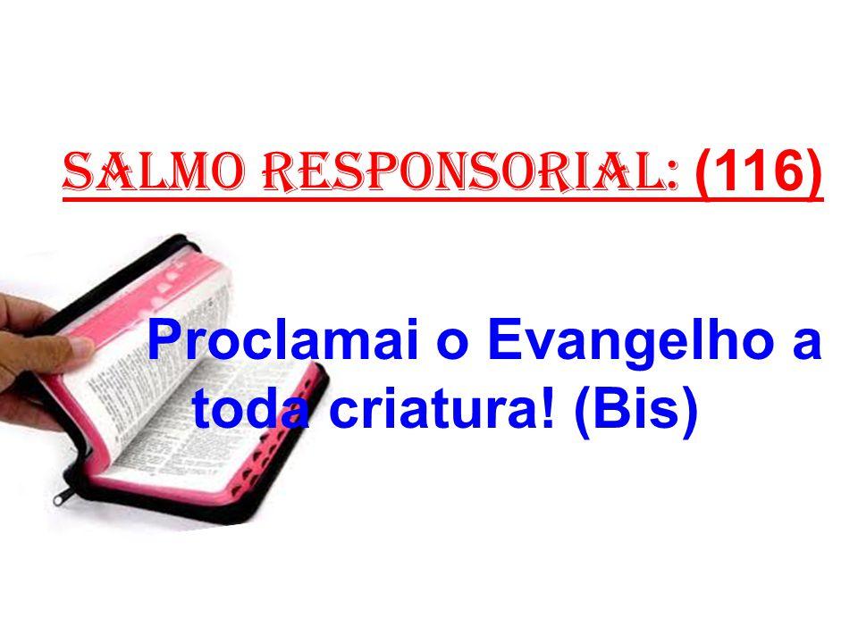 salmo responsorial: (116) 1- Cantai louvores ao Senhor, todas as gentes,/ povos todos, festejai-o.