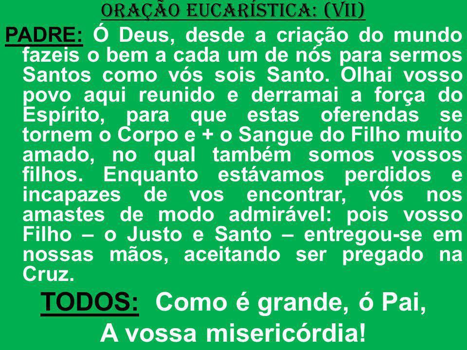 ORAÇÃO EUCARÍSTICA: (VII) PADRE: Ó Deus, desde a criação do mundo fazeis o bem a cada um de nós para sermos Santos como vós sois Santo. Olhai vosso po