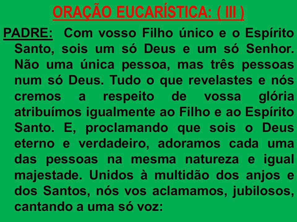 ORAÇÃO EUCARÍSTICA: ( III ) PADRE: Com vosso Filho único e o Espírito Santo, sois um só Deus e um só Senhor. Não uma única pessoa, mas três pessoas nu