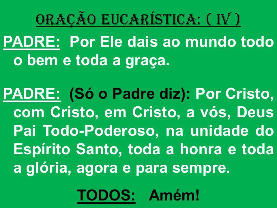 ORAÇÃO EUCARÍSTICA: ( IV ) PADRE: Por Ele dais ao mundo todo o bem e toda a graça. PADRE: (Só o Padre diz): Por Cristo, com Cristo, em Cristo, a vós,