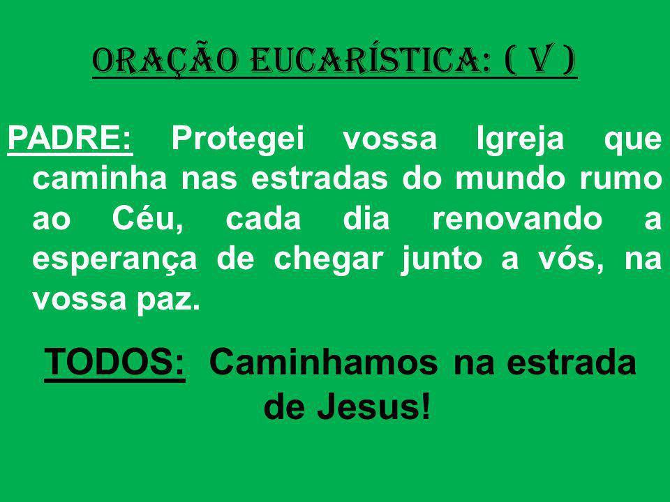 ORAÇÃO EUCARÍSTICA: ( V ) PADRE: Protegei vossa Igreja que caminha nas estradas do mundo rumo ao Céu, cada dia renovando a esperança de chegar junto a