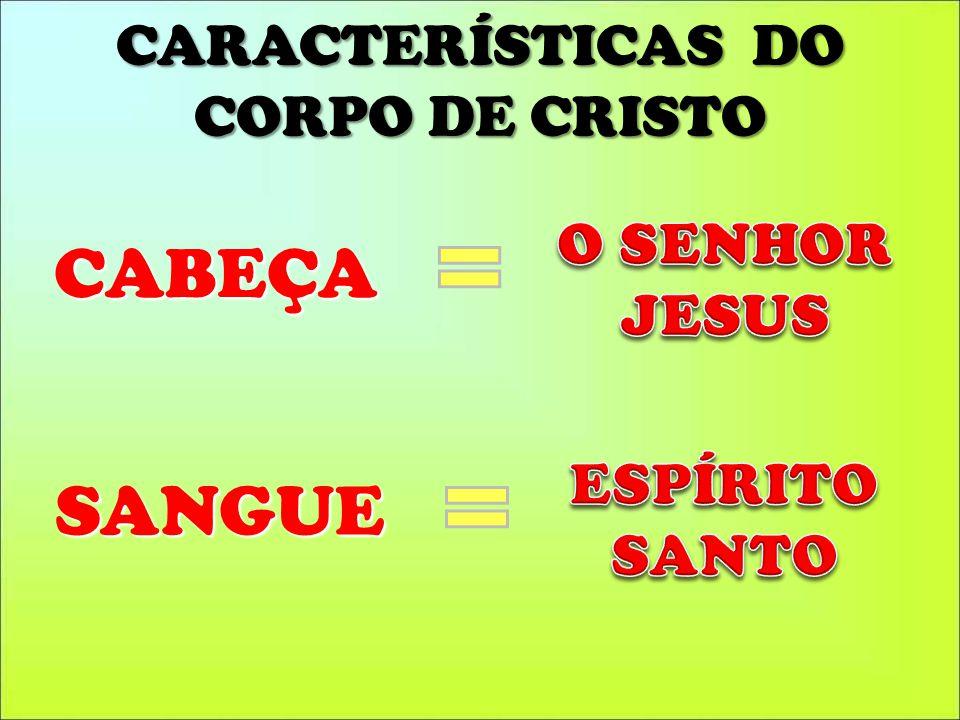 CARACTERÍSTICAS DO CORPO DE CRISTO SANGUE CABEÇA