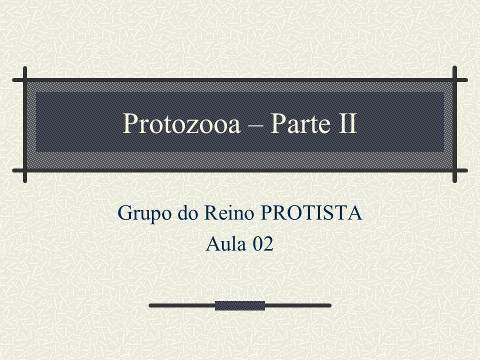 Protozooa – Parte II Grupo do Reino PROTISTA Aula 02