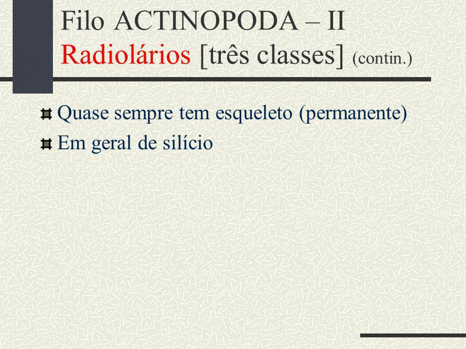 Filo ACTINOPODA – II Radiolários [três classes] (contin.) Quase sempre tem esqueleto (permanente) Em geral de silício