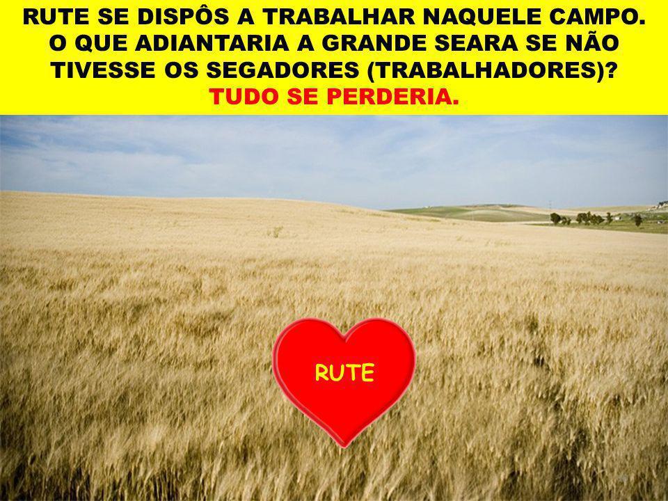 10 RUTE RUTE SE DISPÔS A TRABALHAR NAQUELE CAMPO.