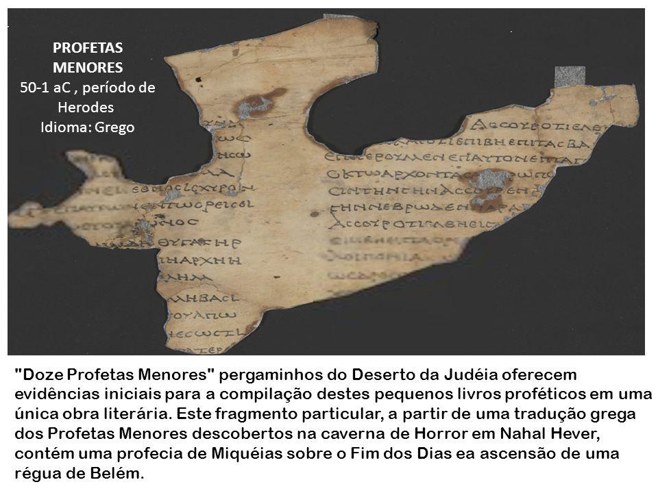 Doze Profetas Menores pergaminhos do Deserto da Judéia oferecem evidências iniciais para a compilação destes pequenos livros proféticos em uma única obra literária.
