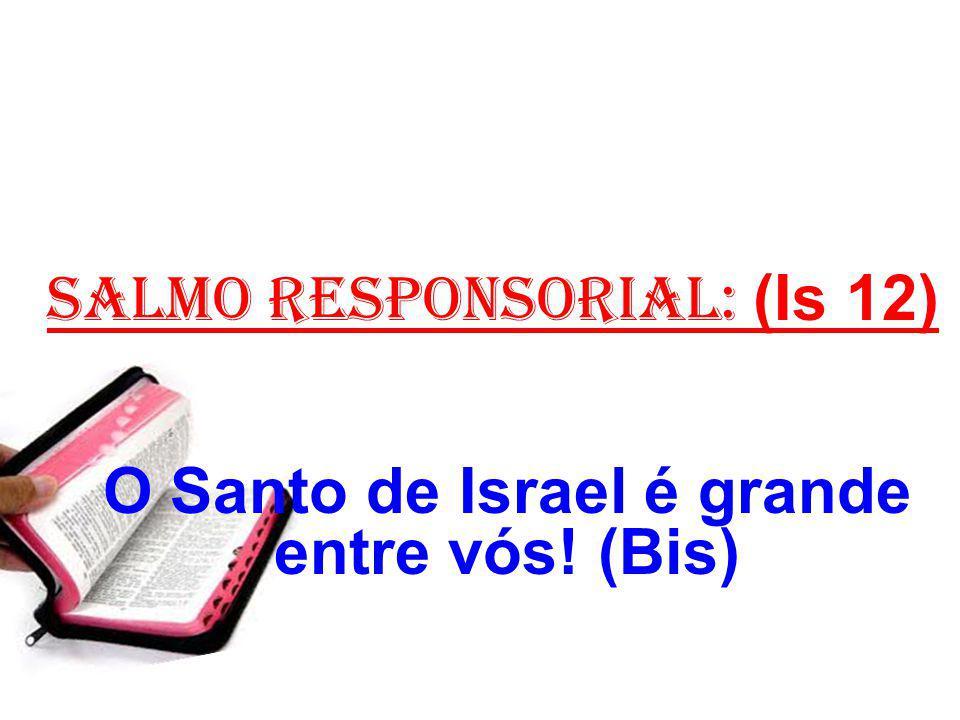 salmo responsorial: (Is 12) O Santo de Israel é grande entre vós! (Bis)