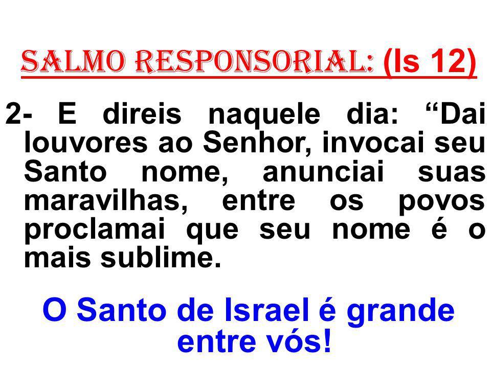 salmo responsorial: (Is 12) 2- E direis naquele dia: Dai louvores ao Senhor, invocai seu Santo nome, anunciai suas maravilhas, entre os povos proclama