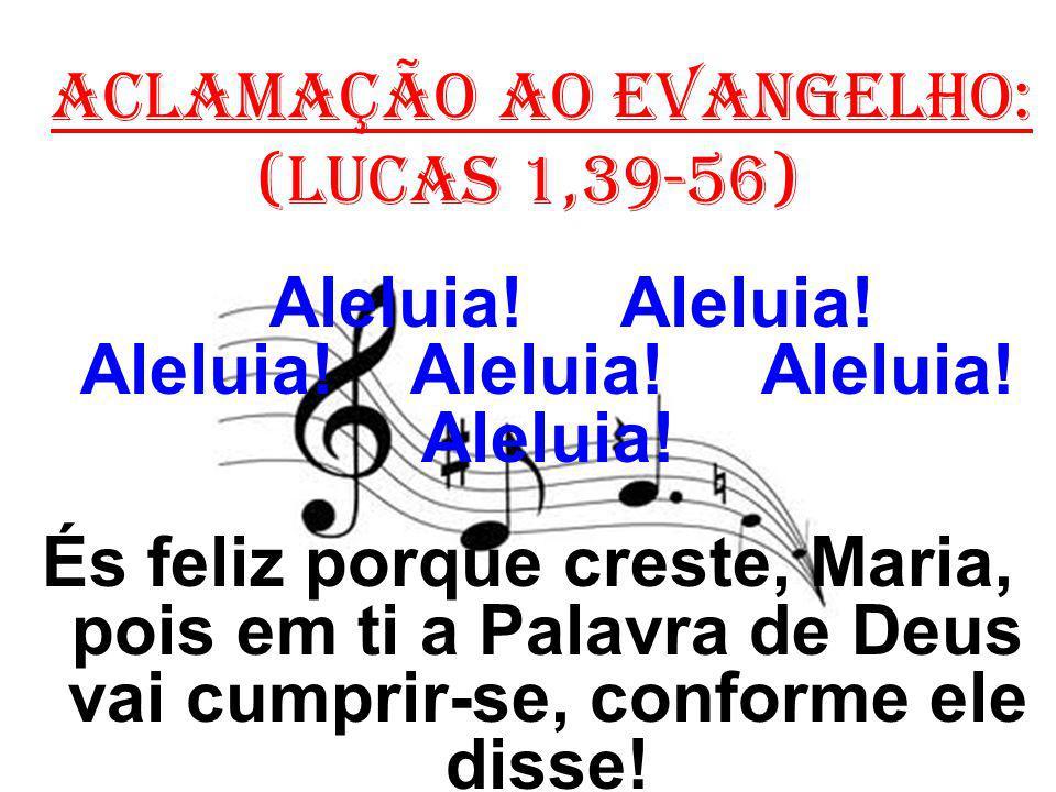 ACLAMAÇÃO AO EVANGELHO: (Lucas 1,39-56) Aleluia! Aleluia! Aleluia! Aleluia! Aleluia! Aleluia! És feliz porque creste, Maria, pois em ti a Palavra de D
