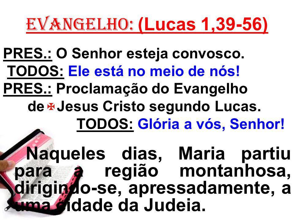 EVANGELHO: (Lucas 1,39-56) PRES.: O Senhor esteja convosco. TODOS: Ele está no meio de nós! PRES.: Proclamação do Evangelho de Jesus Cristo segundo Lu