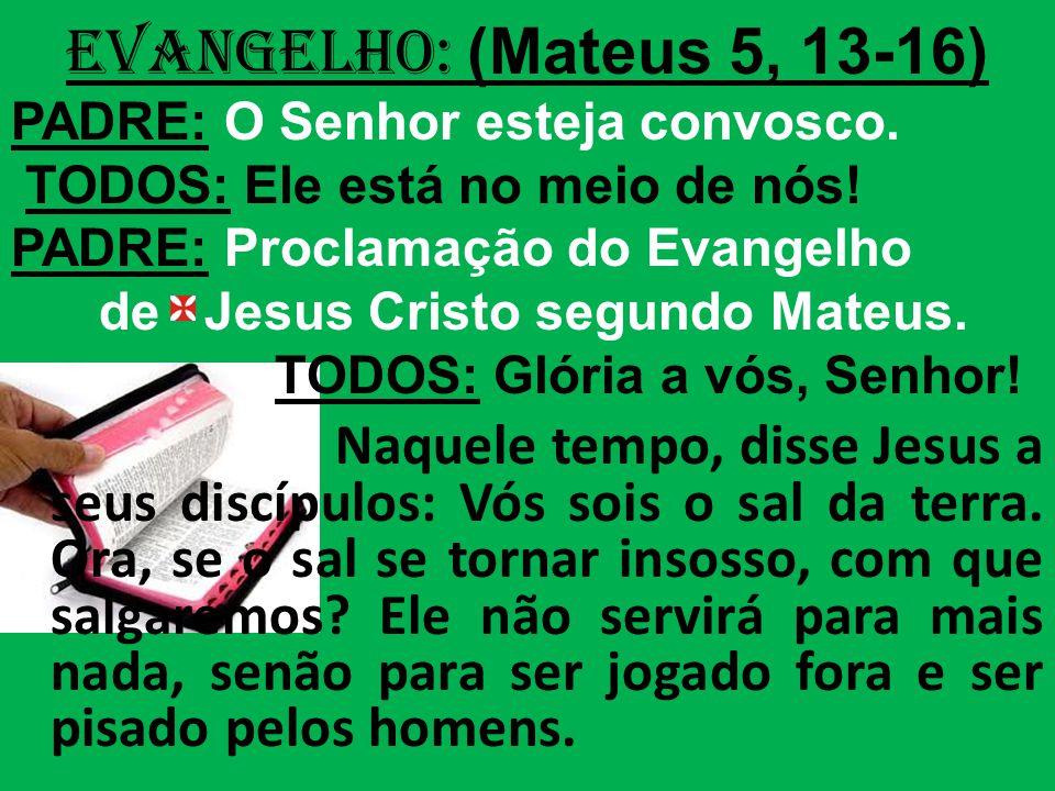 EVANGELHO: (Mateus 5, 13-16) PADRE: O Senhor esteja convosco.