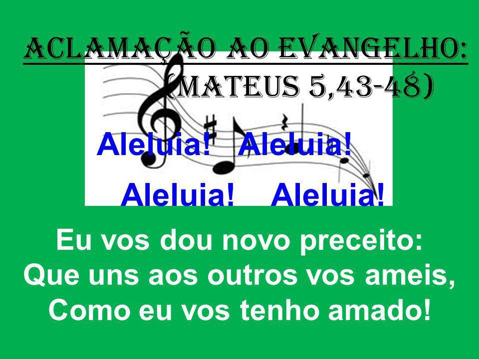 ACLAMAÇÃO AO EVANGELHO: (Mateus 5,43-48) Aleluia! Aleluia! Eu vos dou novo preceito: Que uns aos outros vos ameis, Como eu vos tenho amado!