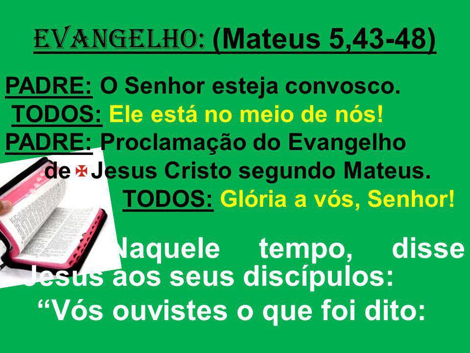 EVANGELHO: (Mateus 5,43-48) PADRE: O Senhor esteja convosco. TODOS: Ele está no meio de nós! PADRE: Proclamação do Evangelho de Jesus Cristo segundo M