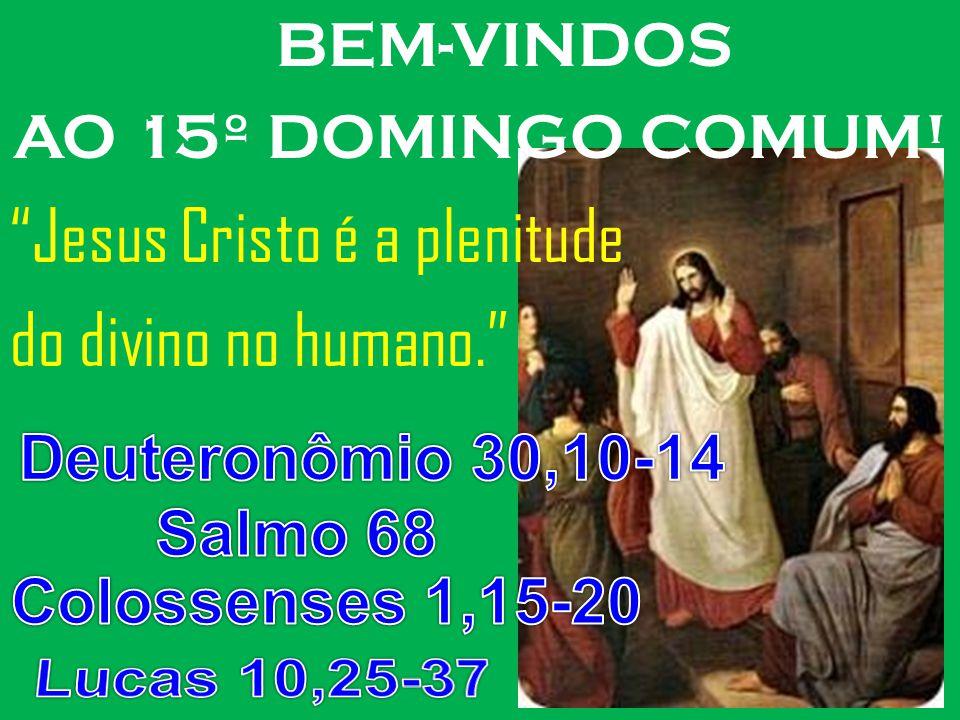 BEM-VINDOS AO 15º DOMINGO COMUM! Jesus Cristo é a plenitude do divino no humano.