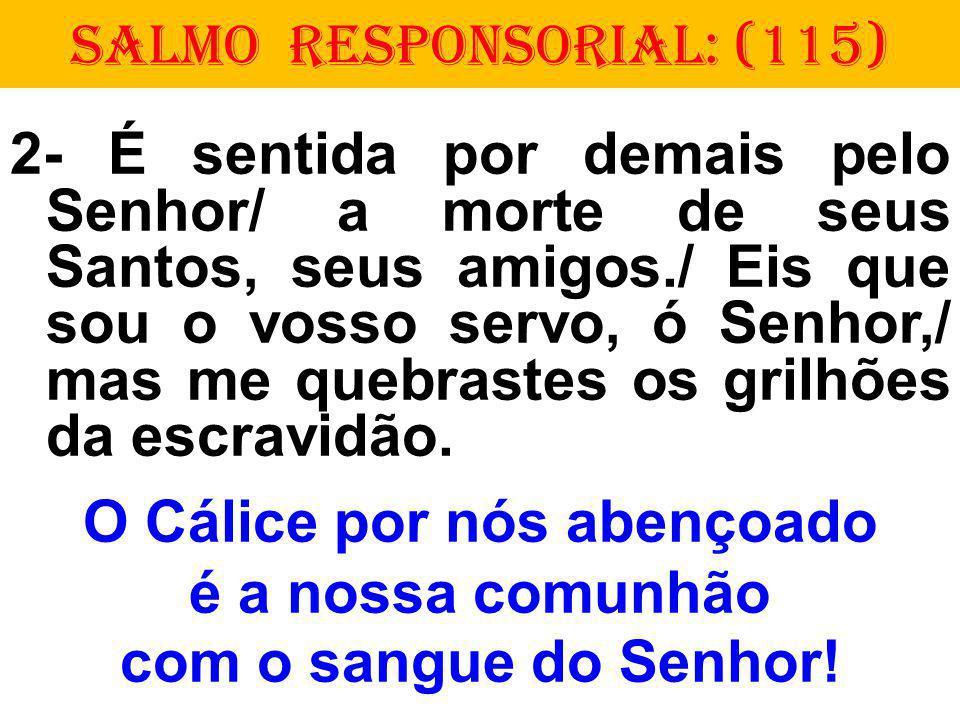 SALMO RESPONSORIAL: (115) 2- É sentida por demais pelo Senhor/ a morte de seus Santos, seus amigos./ Eis que sou o vosso servo, ó Senhor,/ mas me quebrastes os grilhões da escravidão.