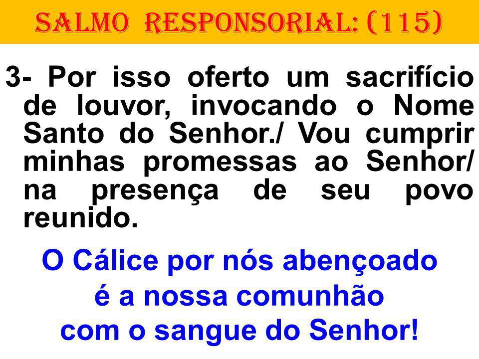 SALMO RESPONSORIAL: (115) 3- Por isso oferto um sacrifício de louvor, invocando o Nome Santo do Senhor./ Vou cumprir minhas promessas ao Senhor/ na presença de seu povo reunido.