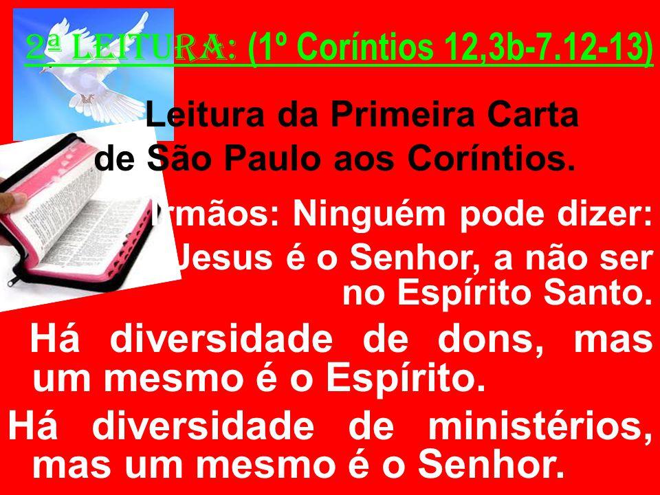 2ª Leitura: (1º Coríntios 12,3b-7.12-13) Leitura da Primeira Carta de São Paulo aos Coríntios. Irmãos: Ninguém pode dizer: Jesus é o Senhor, a não ser