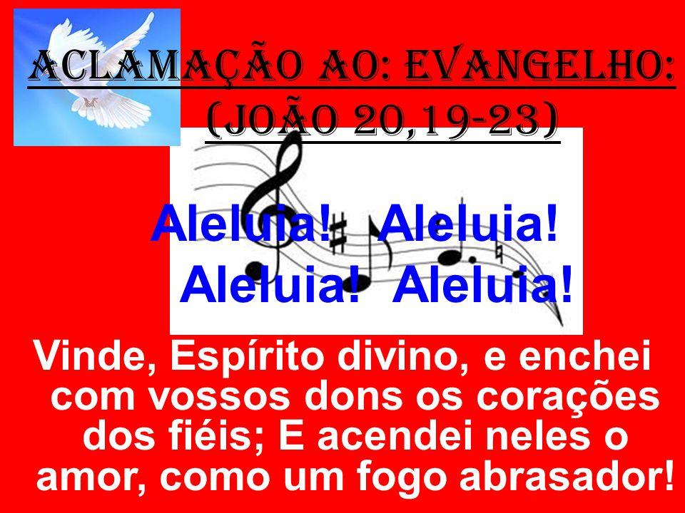 ACLAMAÇÃO AO: EVANGELHO: (João 20,19-23) Aleluia! Aleluia! Vinde, Espírito divino, e enchei com vossos dons os corações dos fiéis; E acendei neles o a