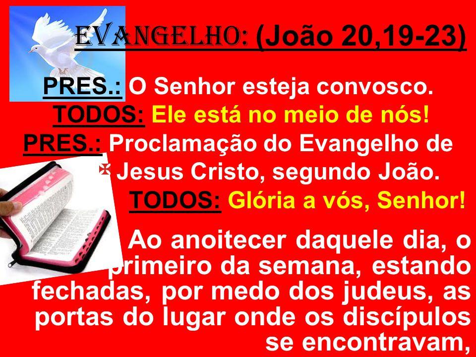 EVANGELHO: (João 20,19-23) PRES.: O Senhor esteja convosco. TODOS: Ele está no meio de nós! PRES.: Proclamação do Evangelho de de Jesus Cristo, segund