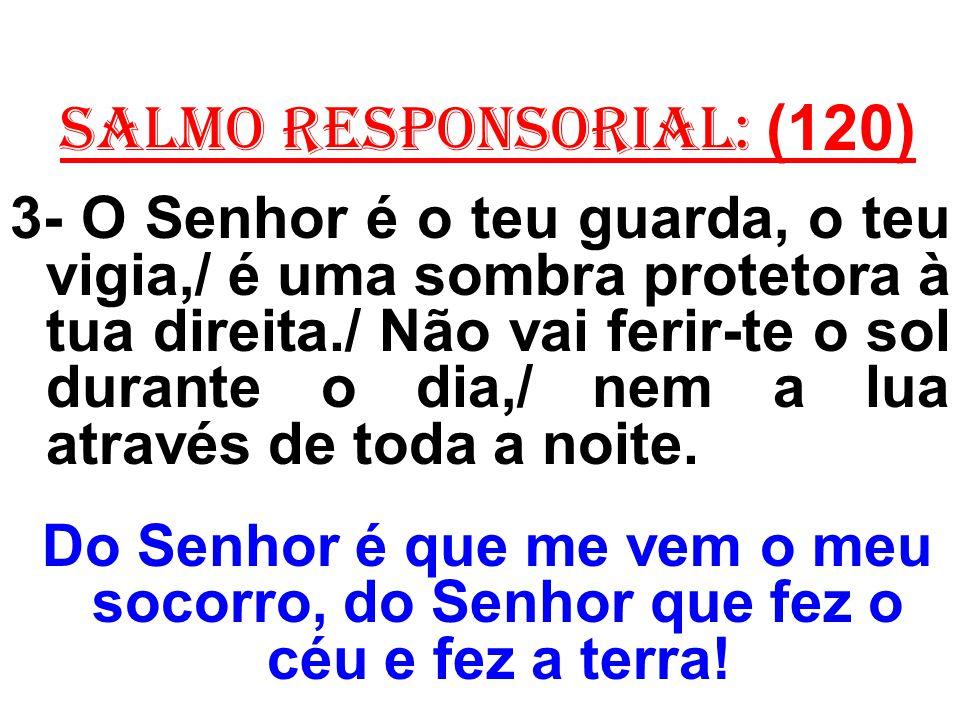 salmo responsorial: (120) 3- O Senhor é o teu guarda, o teu vigia,/ é uma sombra protetora à tua direita./ Não vai ferir-te o sol durante o dia,/ nem