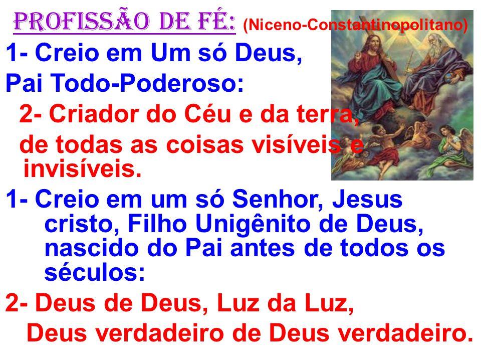 PROFISSÃO DE FÉ: (Niceno-Constantinopolitano) 1- Creio em Um só Deus, Pai Todo-Poderoso: 2- Criador do Céu e da terra, de todas as coisas visíveis e i